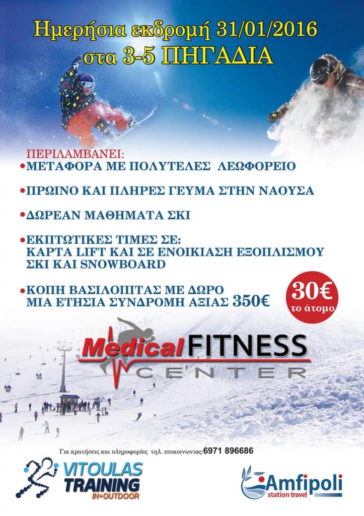 afisa3-5pigadia2016